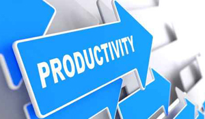 ermolli_productivity